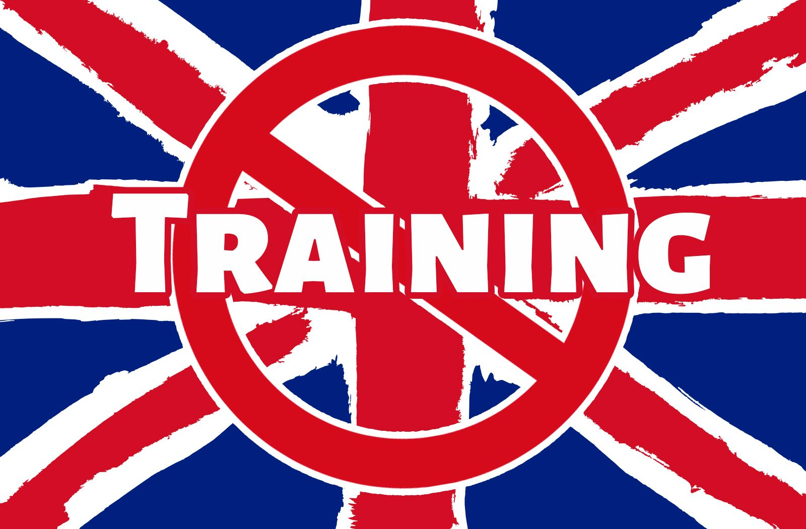 Expat Managers - Why do you Conduct Training in English?