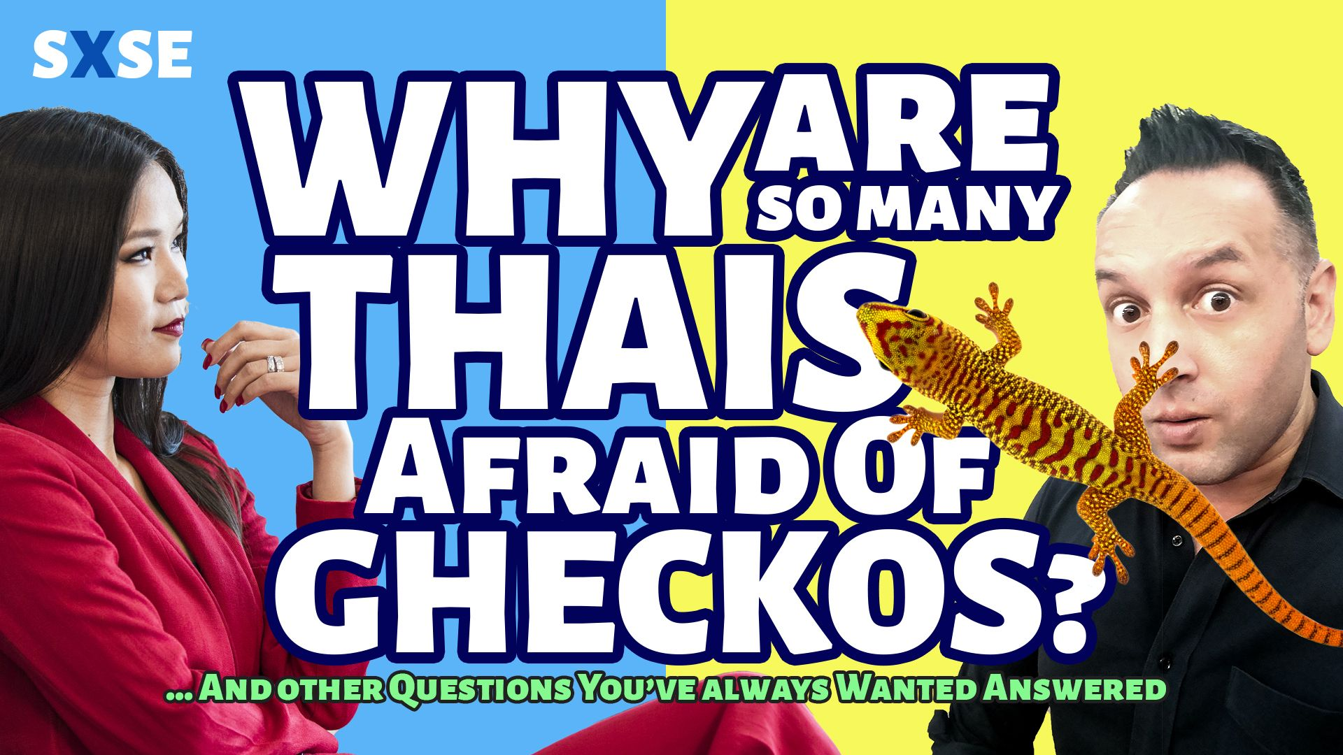 Why Are Many Thais Afraid of Gheckos (jingjok)? And other Questions We've Always Wanted to Ask Each Other
